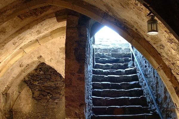 Winchelsea Cellars Tour